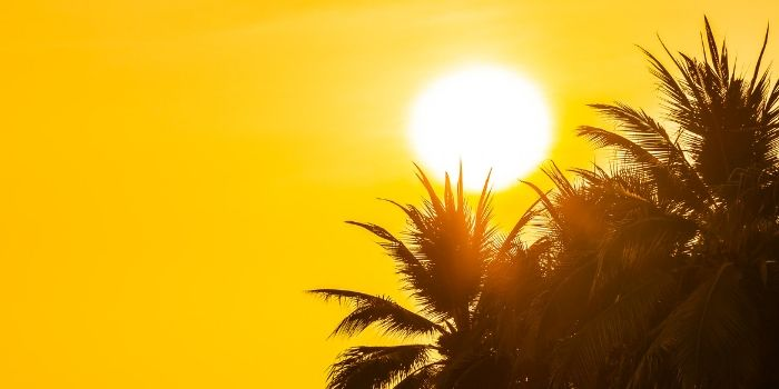 know about Sunstroke